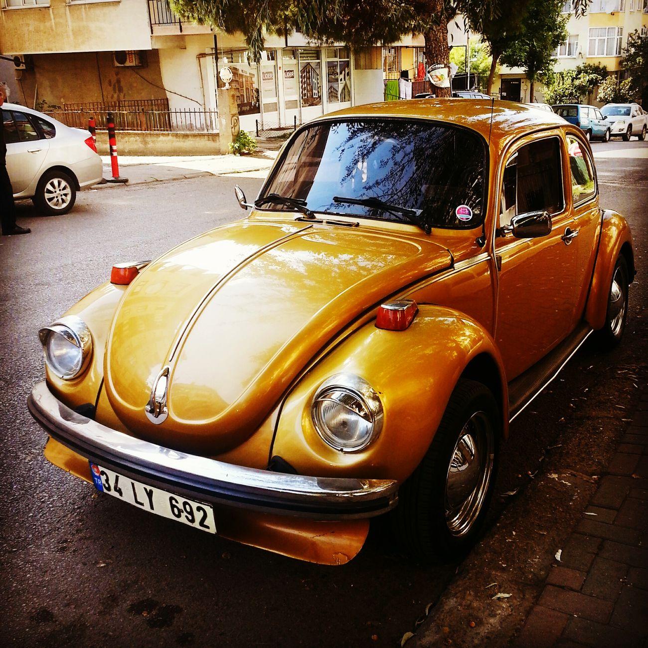 VW Volkswagen Vosvos Kaplumbaga PhotoByMuratGul