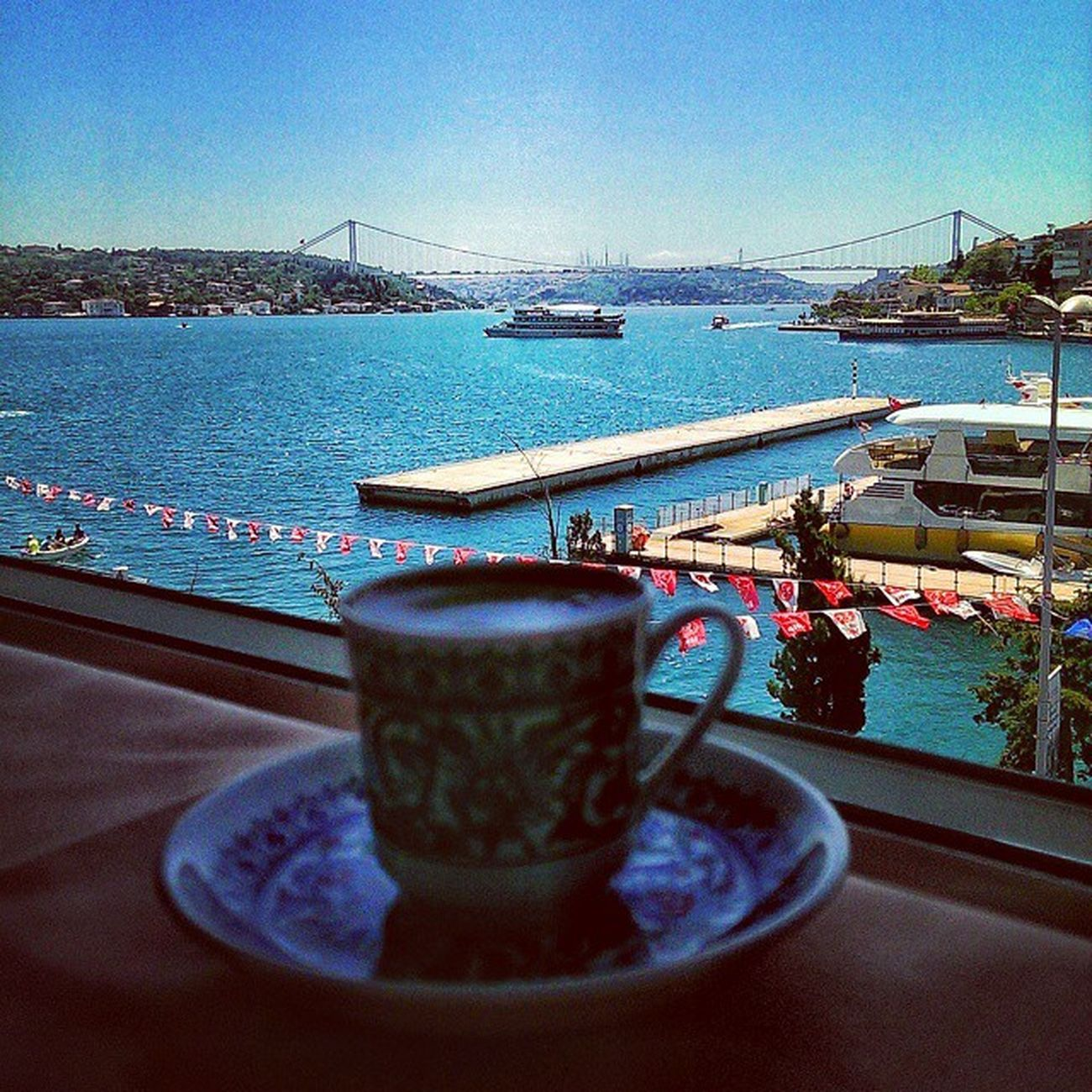 Istanbul Fishvar Blue Bosphorus