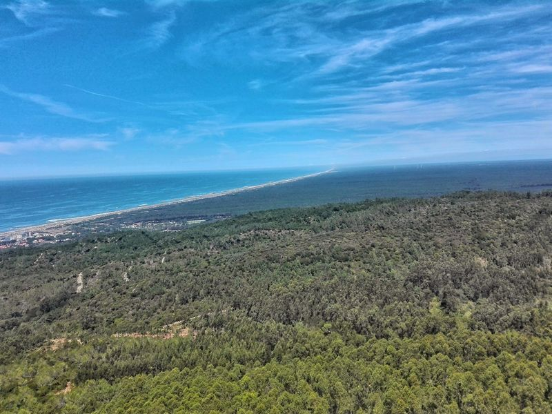 This day was amazing! 1/08/2017 Sea Beach Nature Beauty In Nature Water Outdoors No People Scenics Vacations Day Landscape Grass Horizon Over Water Wave Sky Freshness Clear Sky Figueira Da Foz, Portugal Sky And Clouds Cliff Trees And Sky Green Forest Portuguese Portugal
