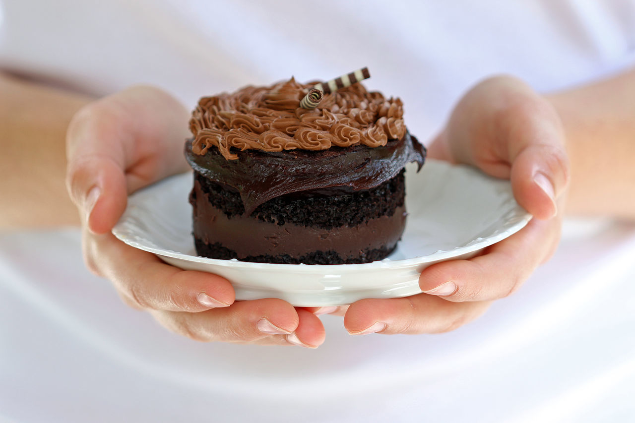 Decadence Cake Plate Chocolate Chocolate Cake Close-up Concept Day Decadent Dessert Decoration Dessert Focus On Foreground Food Food And Drink Frosting Hands Holding Food Holding Human Hand Indulgence One Person Plate Presentation Ready-to-eat Sugar Sweet Food Temptation White
