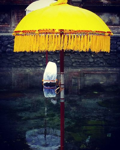 Bali Ubudbali Ig_artistry Ig_inspiration Inspiration Ig_ubudbali Ig_ubud Nothingisordinary Creatives Creative Ig_indonesia_ Ig_ponds Ig_peace