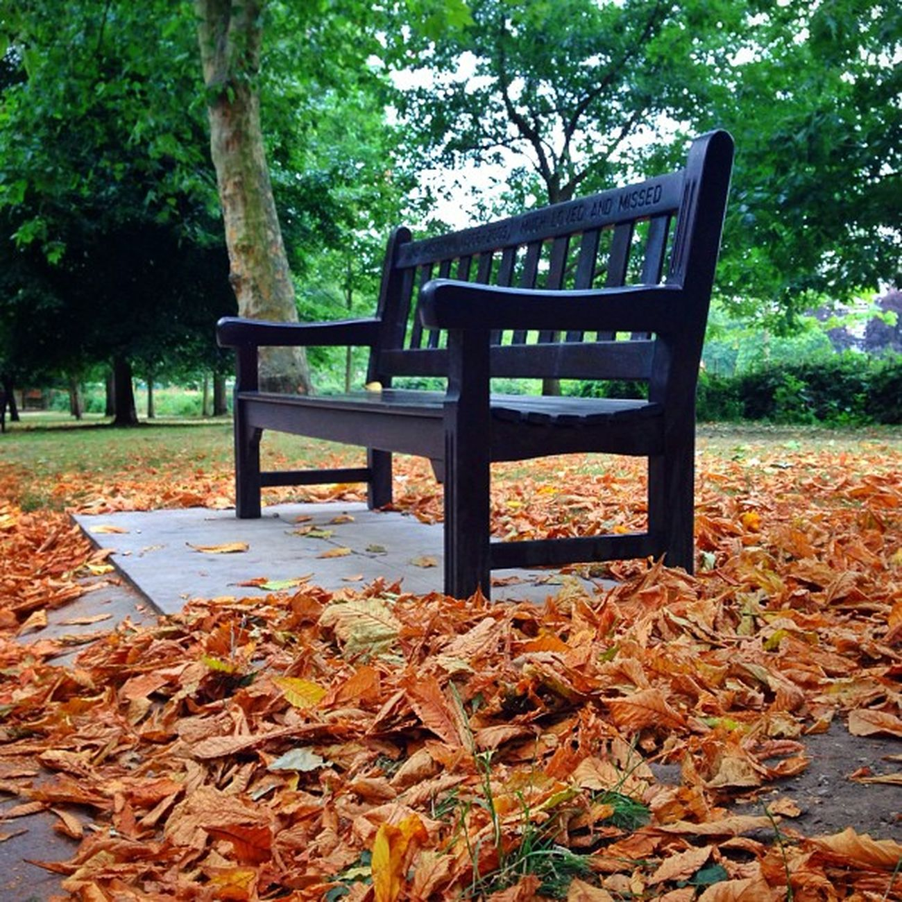 Still in time for parkbenchthursday Lovely bench in #Holland park????????#parkbenchthursday #hollandpark #alan_in_london #gf_uk #gang_family #igers_london #insta_london #london_only #thisislondon #ic_cities #ic_cities_london #ig_england #love_london #gi_u Gi_uk Igers_london Ig_england Love_london Holland Ic_cities_london Ig_london Gang_family Aauk Londonpop Allshots_ Claudialovesbenches London_only Hollandpark Ic_cities Yourturnbritain Gf_uk Alan_in_london Insta_london Parkbenchthursday Thisislondon