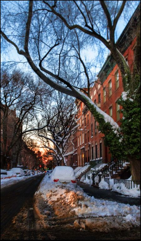 Sunrise on W. 11th St. - 1/25/16 2 Days After Snow Storm Bare Tree Building Exterior Cars W/ Snow Cold Temperature Outdoors Row Of BrownStone Houses Snow On Tree Branches Street Senic Winter