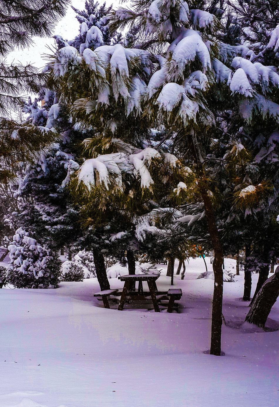 Snow Kar Eye4photography  VSCO EyeEm Best Shots Eye4photography  Eyeem Turkey Enjoying Life Photooftheday Bestoftheday