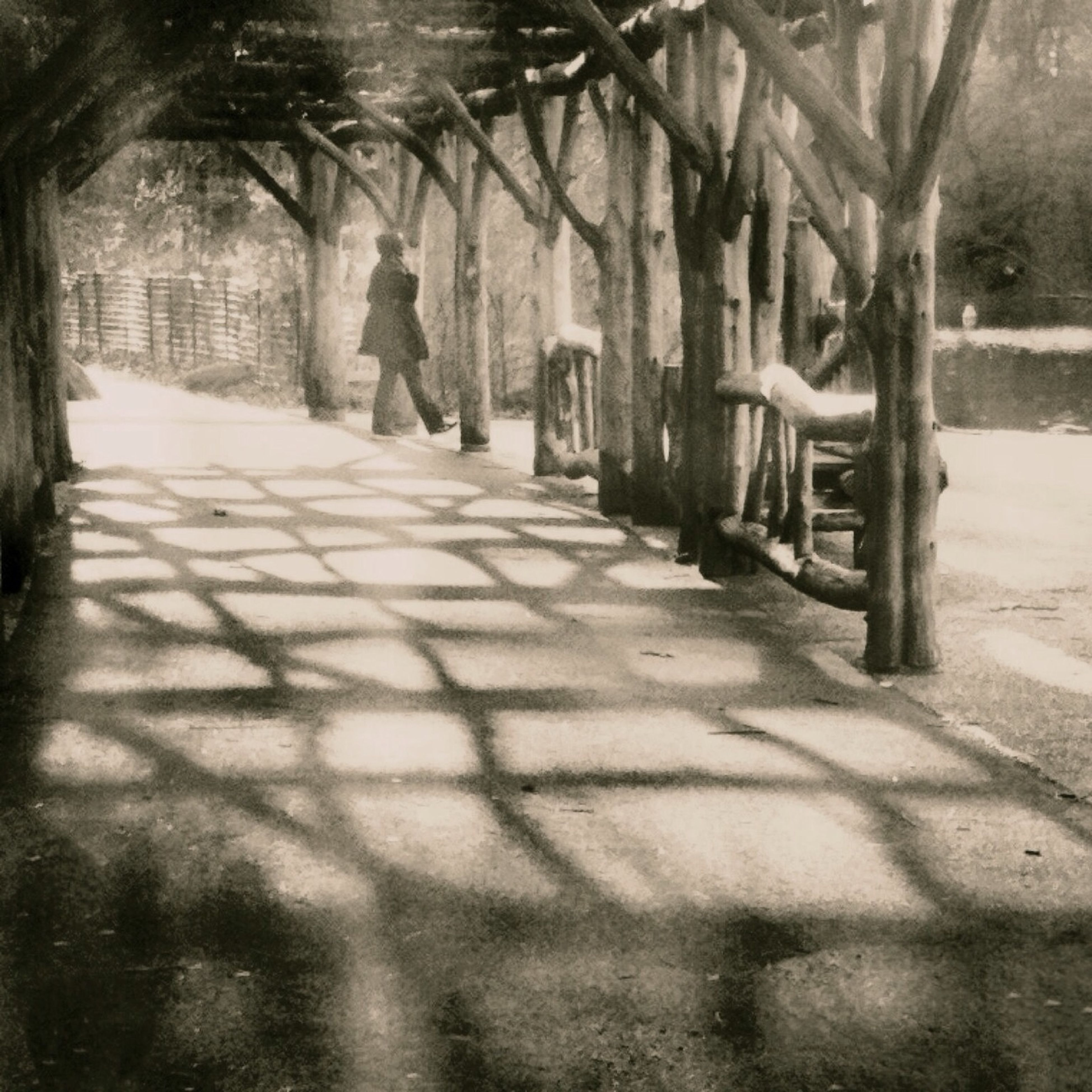shadow, sunlight, tree, the way forward, footpath, walkway, built structure, street, cobblestone, sidewalk, architecture, day, pathway, outdoors, building exterior, walking, paving stone, park - man made space