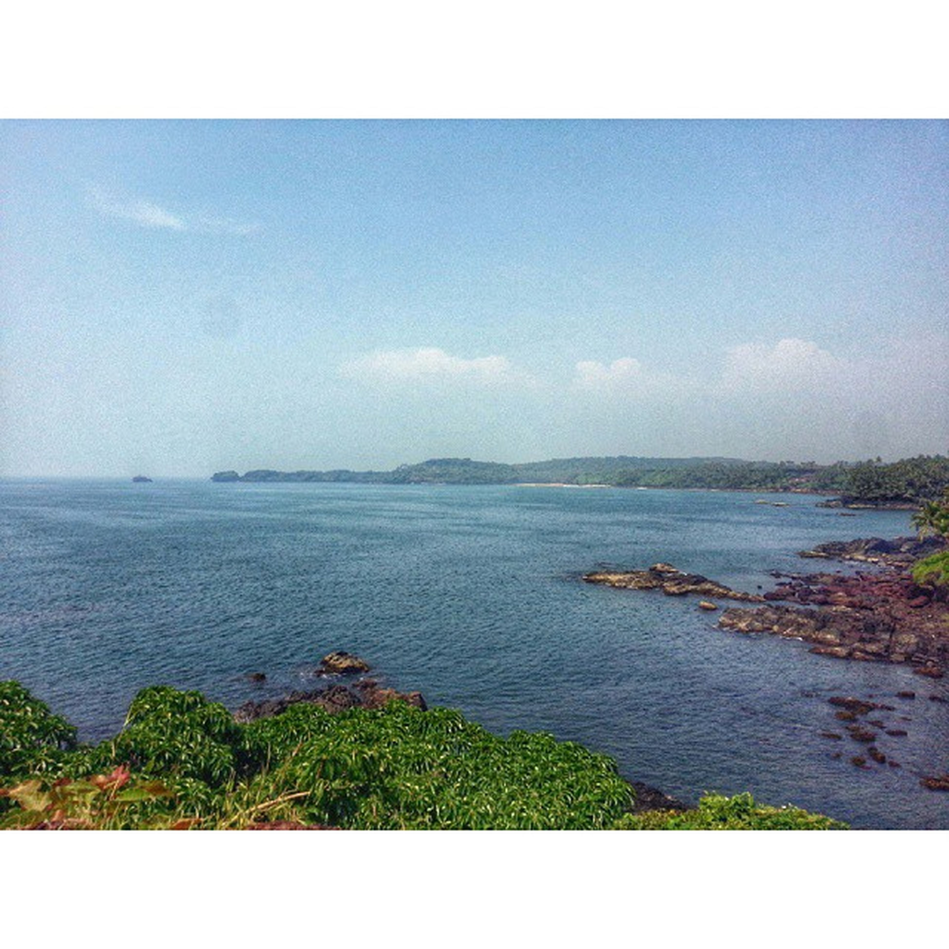 sea, transfer print, water, horizon over water, tranquil scene, auto post production filter, tranquility, scenics, beauty in nature, sky, nature, beach, coastline, plant, idyllic, growth, shore, tree, day, outdoors
