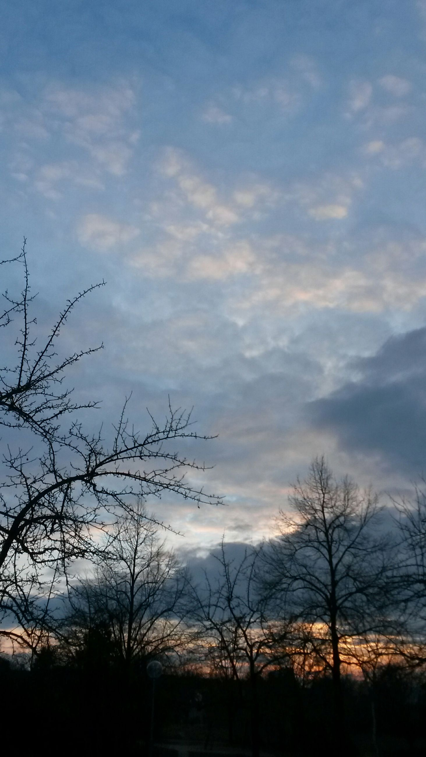bare tree, silhouette, sky, tree, low angle view, cloud - sky, sunset, branch, cloudy, beauty in nature, tranquility, nature, cloud, scenics, dusk, tranquil scene, outdoors, no people, built structure, building exterior