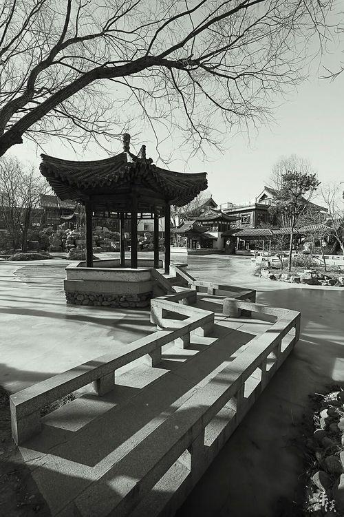 榆树庄公园 LeicaM9 Leica_camera Leicacamera M9 Blackandwhite Black And White Photography Black And White Black & White Leica Black And White Voigtlander 15mm Buiding Buidings Beijing China