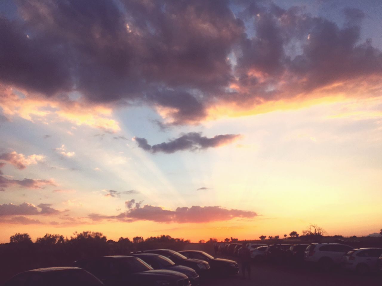 sunset, orange color, cloud - sky, sky, beauty in nature, nature, car, scenics, no people, outdoors, sunlight, tree, day