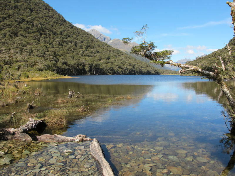 Beauty In Nature Crystal Water Day Landscapes With WhiteWall Lake Mountain Mountain Range Nature New Zealand New Zealand Beauty Non-urban Scene Outdoors Reflection River Rock Rock - Object Rock Formation Routeburn Track Scenics Sky Tranquil Scene Tranquility Tree Water