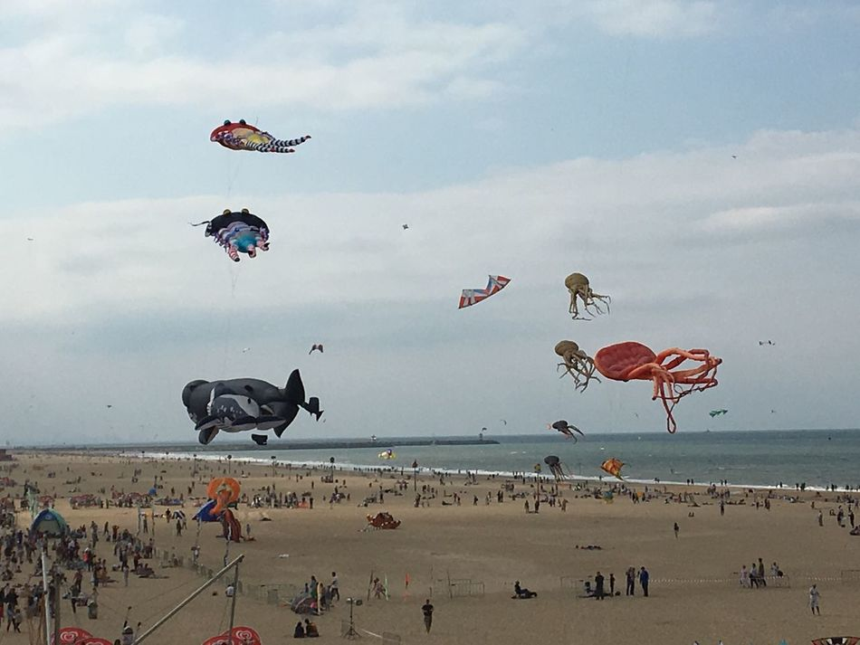 Kites at the beach, sea life in the air SScheveningen bBeachKKiteseEnyoing The View eEnjoySSealife