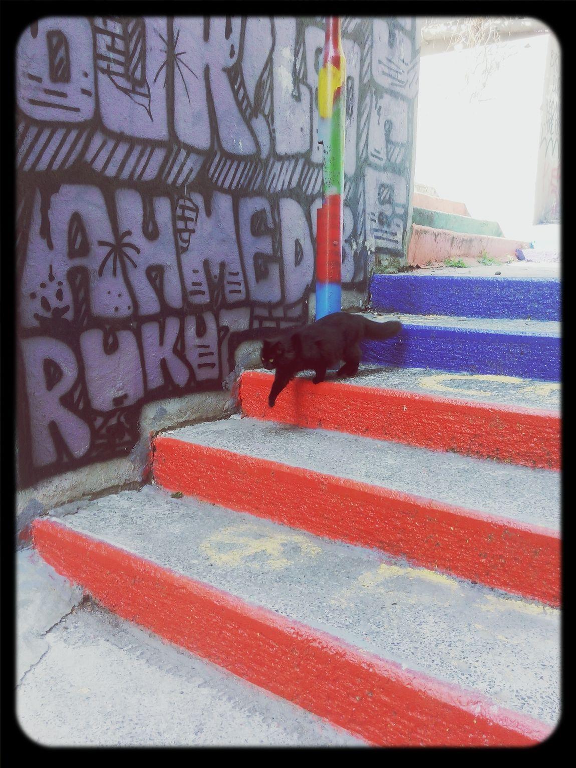 Cihangir merdivenleri... :)