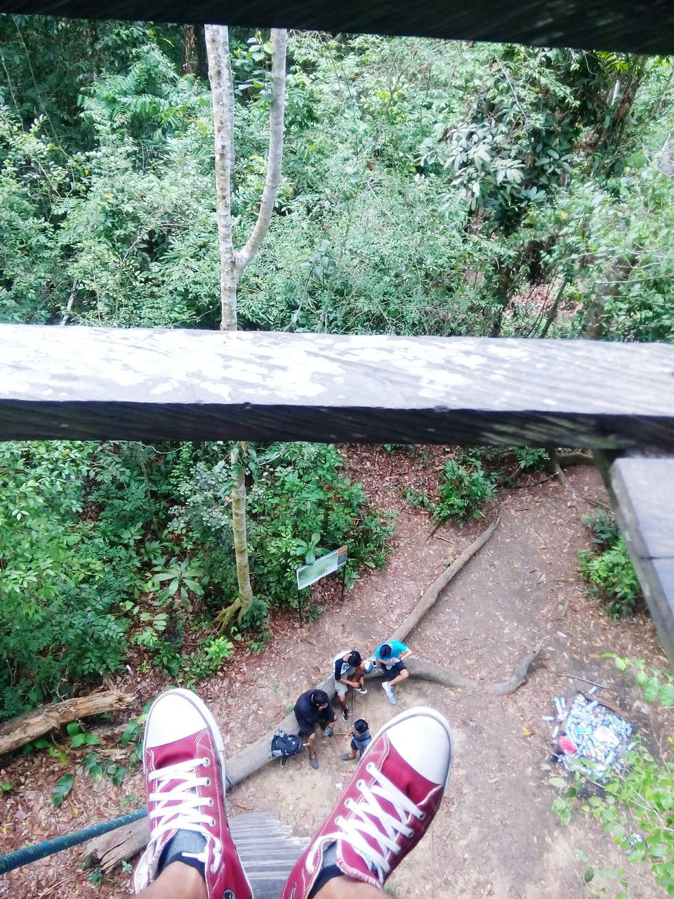 low section, human leg, shoe, real people, one person, day, personal perspective, high angle view, standing, outdoors, plant, human body part, lifestyles, nature, tree, close-up, people