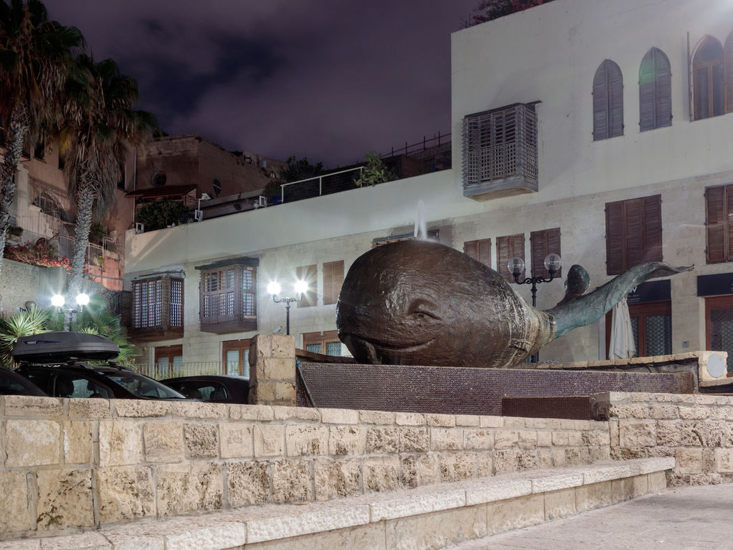 Alcove and fountain in the shape of a whale on the night street in old city Yafo, Israel. Alcoves Architecture Beautiful Building Exterior City Design Drop Famous Fountain Israel Jaffa Modern Night Park Sculpture Shape Statue Stone Street Tel-aviv Travel Urban View Whale Yafo