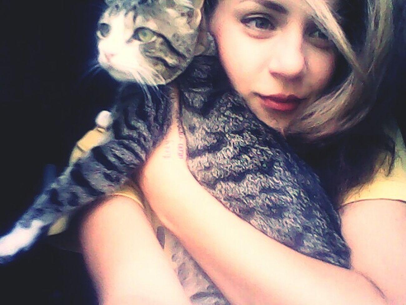 Mycat♥ EyeEm Animal Lover In Love With It Good Memories