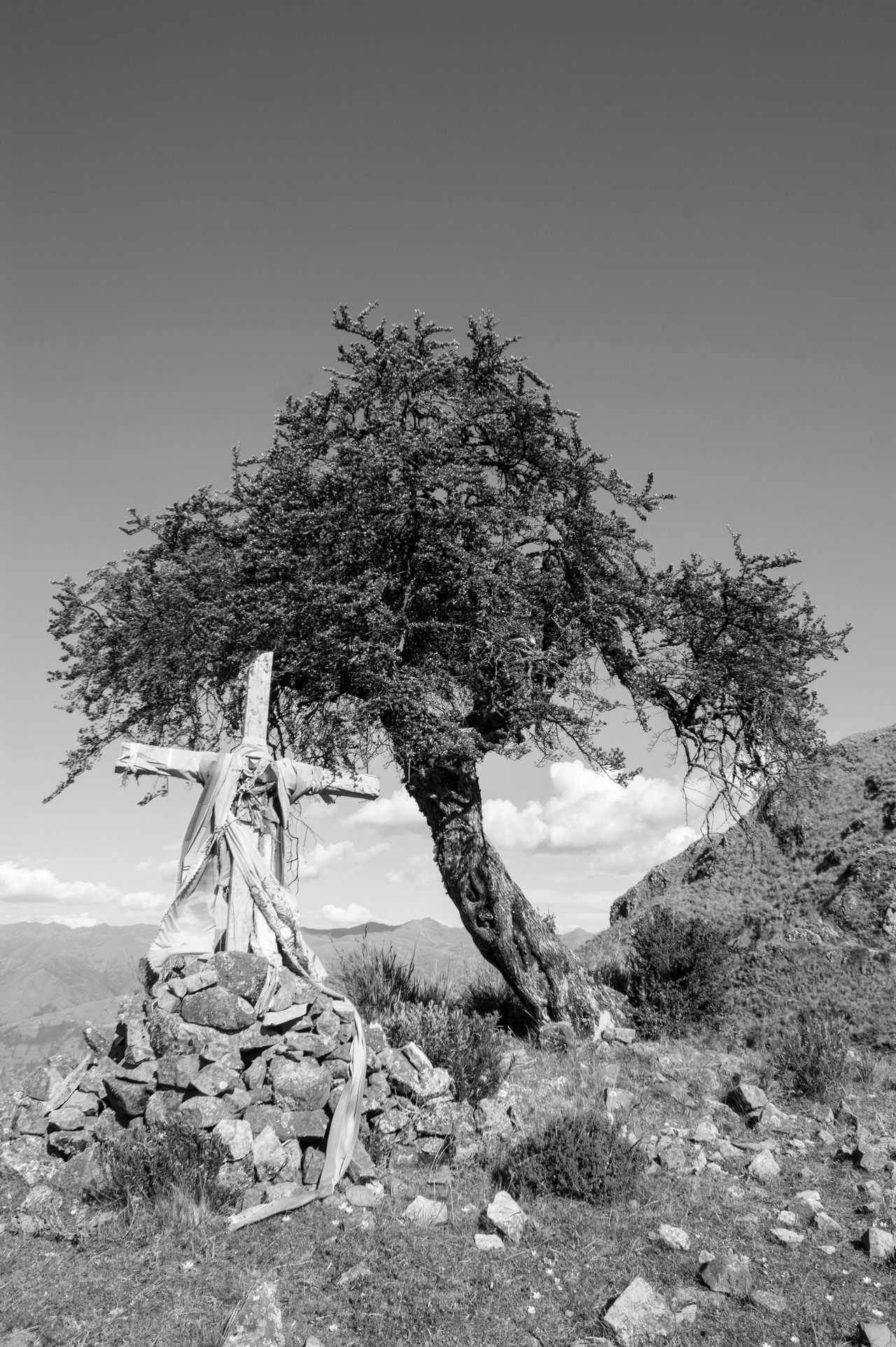 Cross Escapism Grave Minimalism Peru Sacred Places Showcase: November Shrine Tree The Great Outdoors - 2016 EyeEm Awards Eyem Bestsellers Monochrome Photography Art Is Everywhere The Secret Spaces