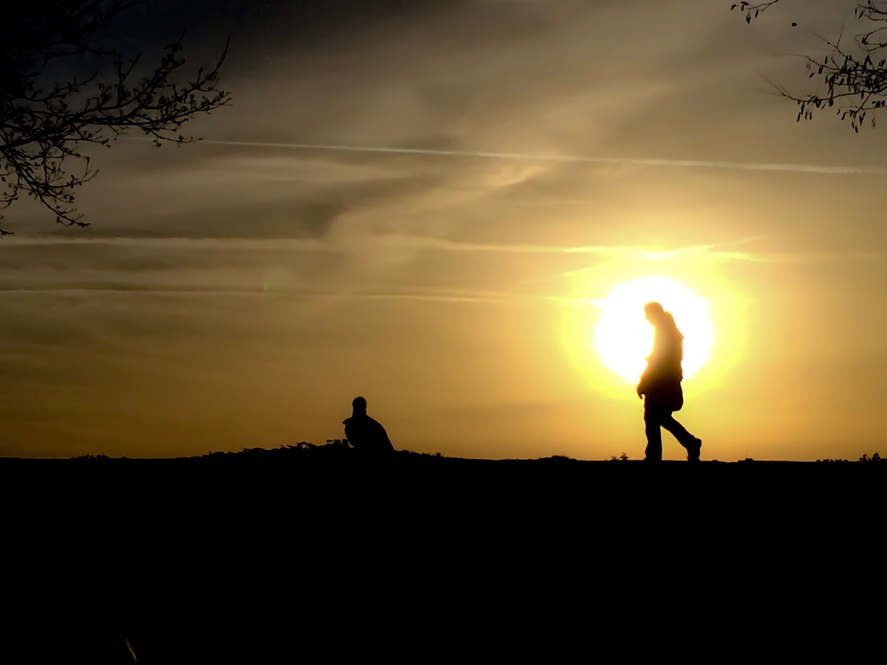Walking at sunset (edit removed the noise) Baden-Württemberg  Beauty In Nature Bird Cloud - Sky Friendship Germany GERMANY🇩🇪DEUTSCHERLAND@ Nature Only Men Outdoors People Scenics Silhouette Sky Sun Sunset Togetherness Two People Surrealism Surreal Dreamlike