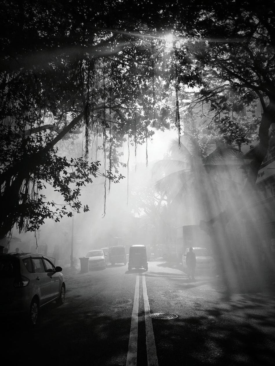 When nature feels creative. Fog Travel Nature Beauty In Nature Sky City Day Outdoors B&w B&w Street Photography B&W Collective The City Light City Street Smoke Newoneyeem