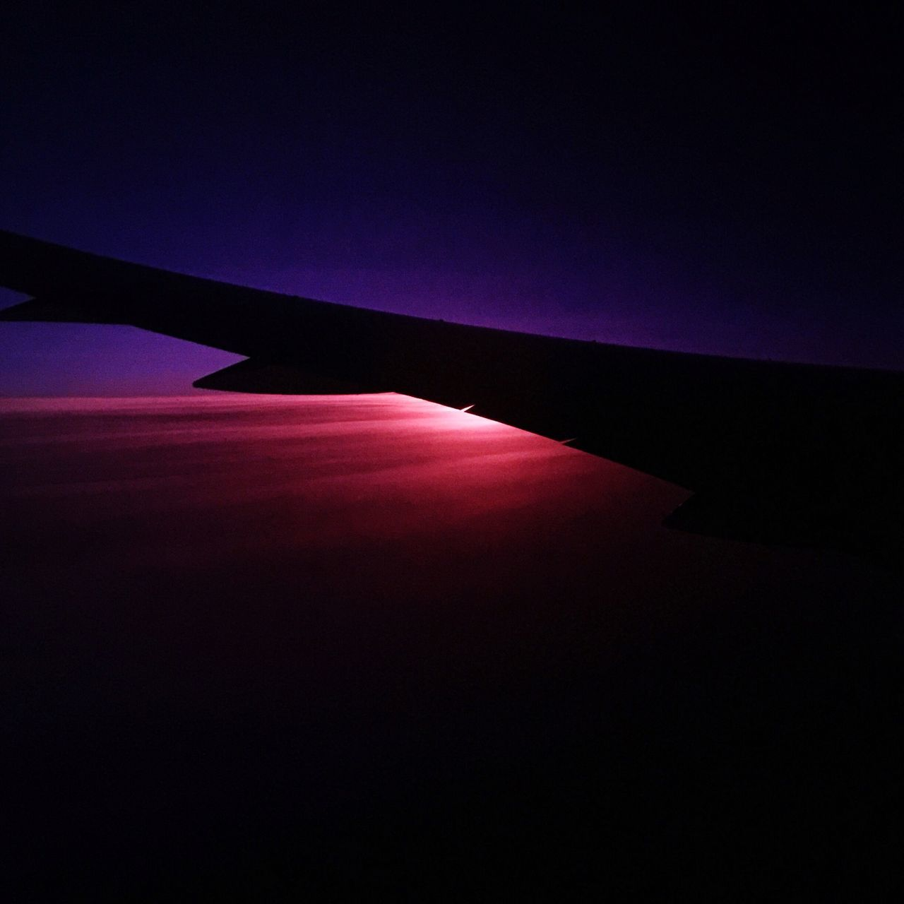 All Nippon Airlines Sky Sunset Purple Pink Wings