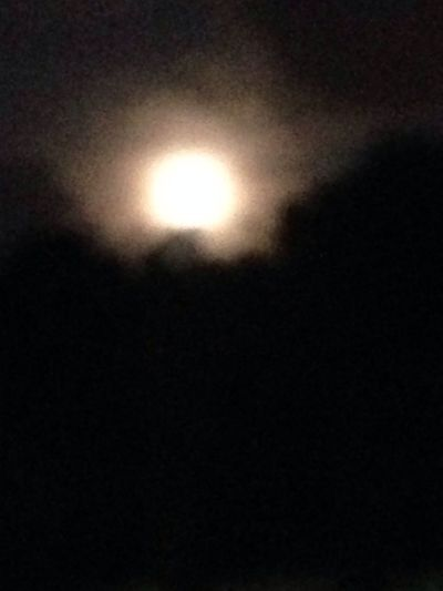 Supermoon 2014 Moon Over Miami Dedicated To My Friends/followers.... Thanks A Million!!