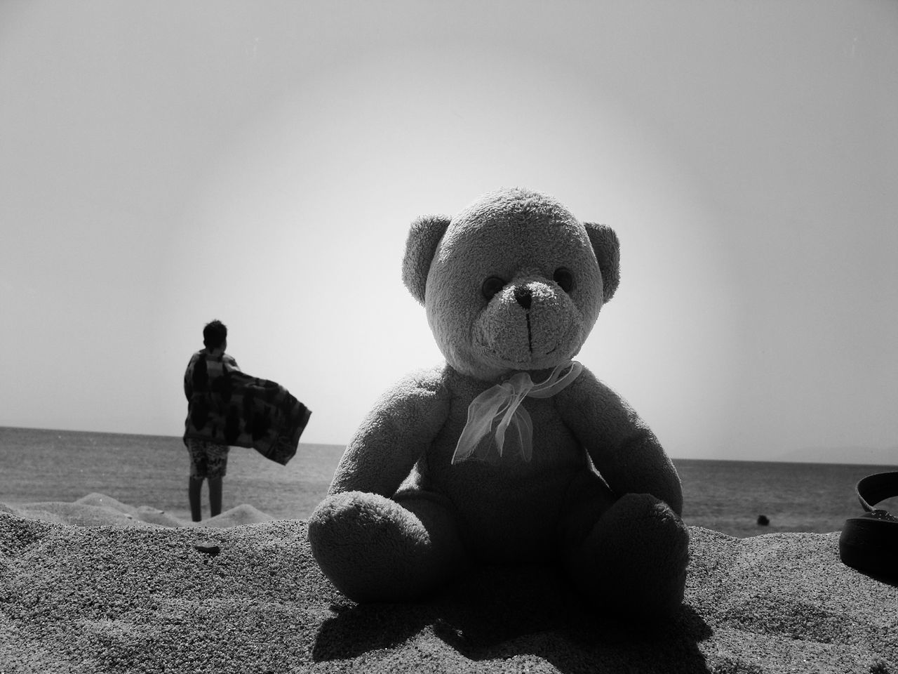 Beautiful stock photos of teddy bear, Auto Post Production Filter, Backlit, Beach, Clear Sky