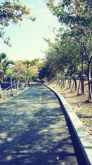 Kaohsiung, Taiwan Bike Lane Relaxing Enjoy The Sun