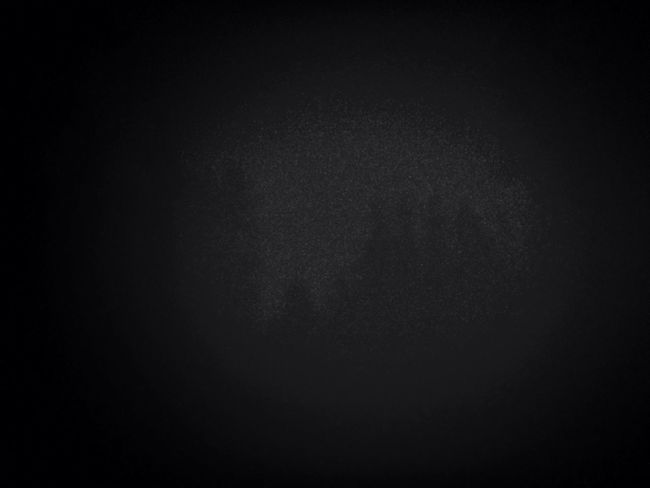 Im finstern Wald ...