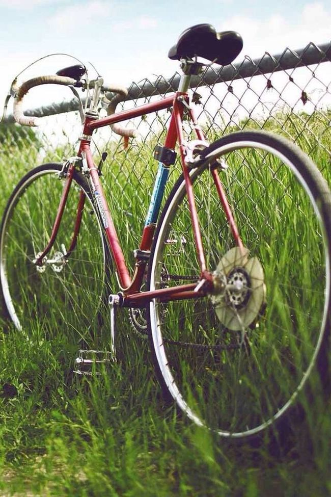 Nature Collection Bike Bike Envy Bicicletta