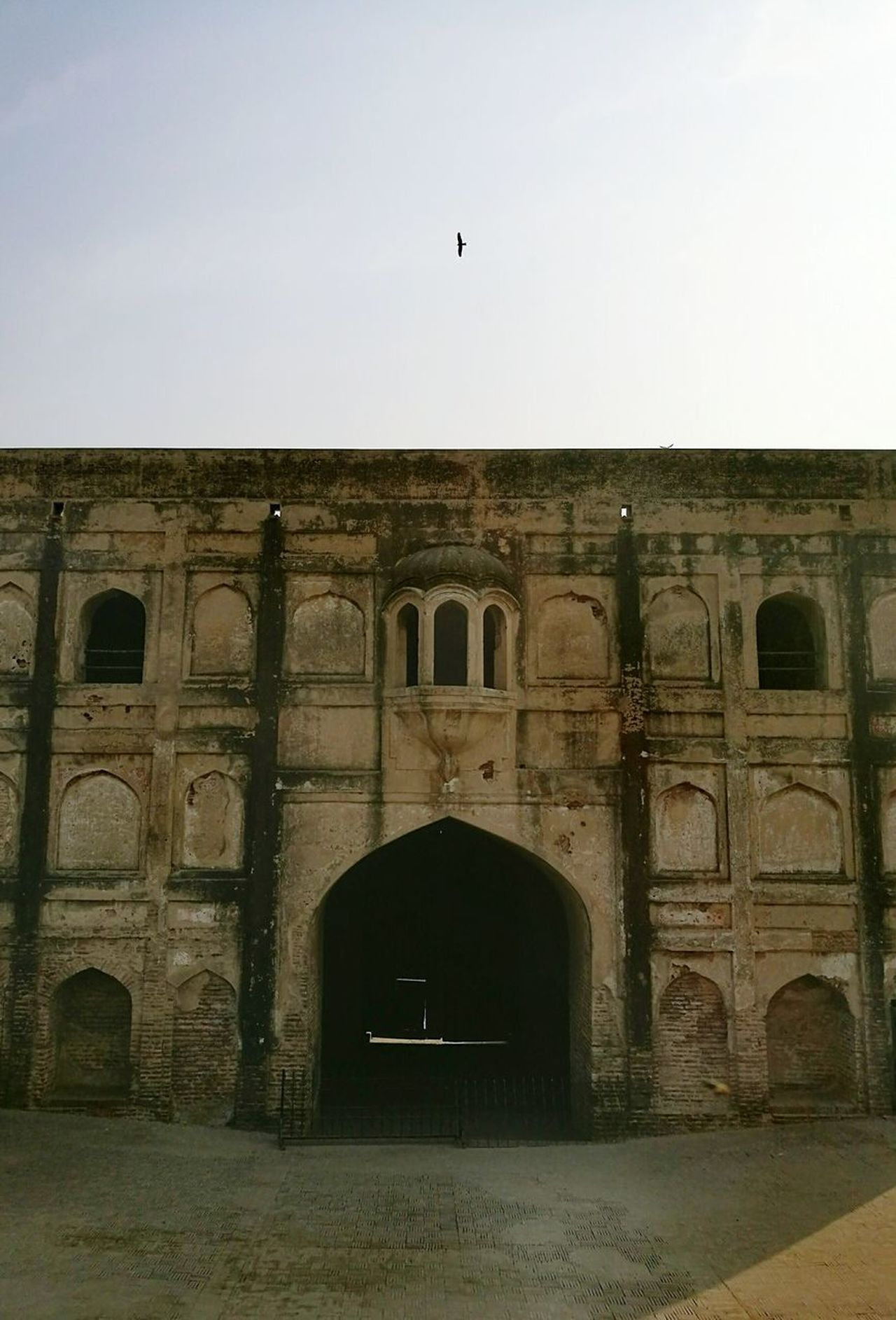 Built Structure Bird Architecture Arch First Eyeem Photo Sky Finding New Frontiers Lahore Fort Pakistan History Through The Lens