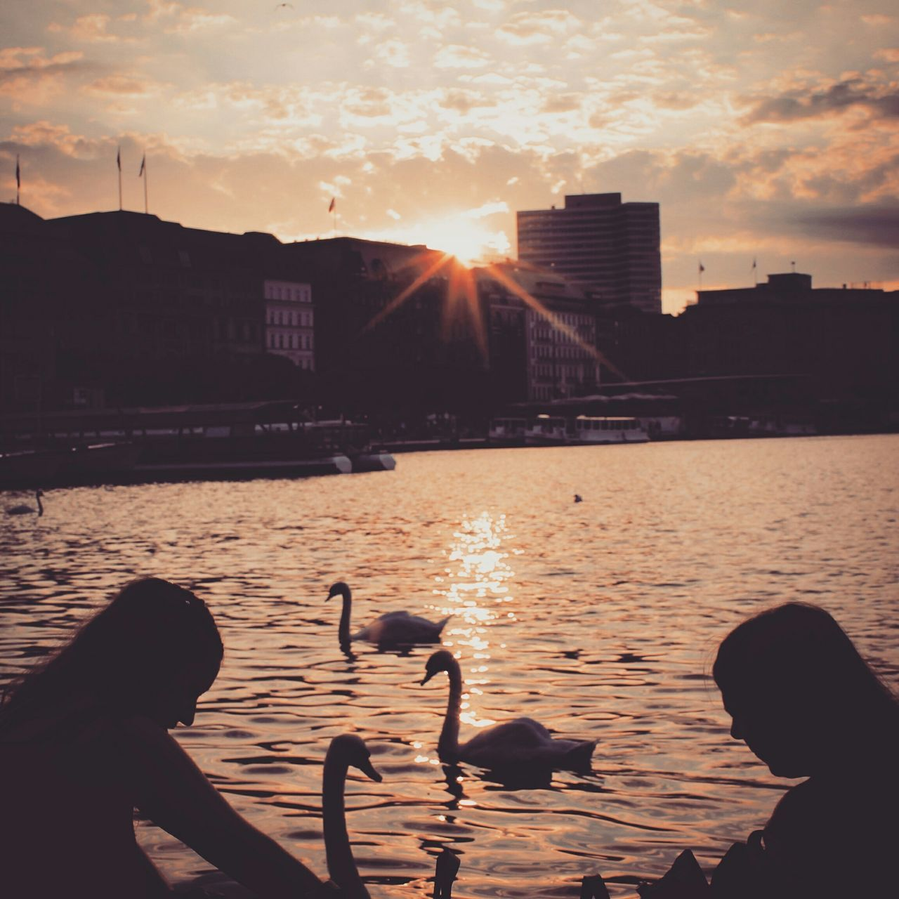 Hamburg Hamburch Hamburgcity Hamburg Alster Urban Lifestyle Sunset Hanging Out Relaxing Strangers Food