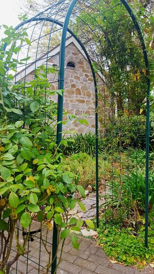 Country cottage Country Living Country Cottage Archway Garden Garden Photography Stone Cottage