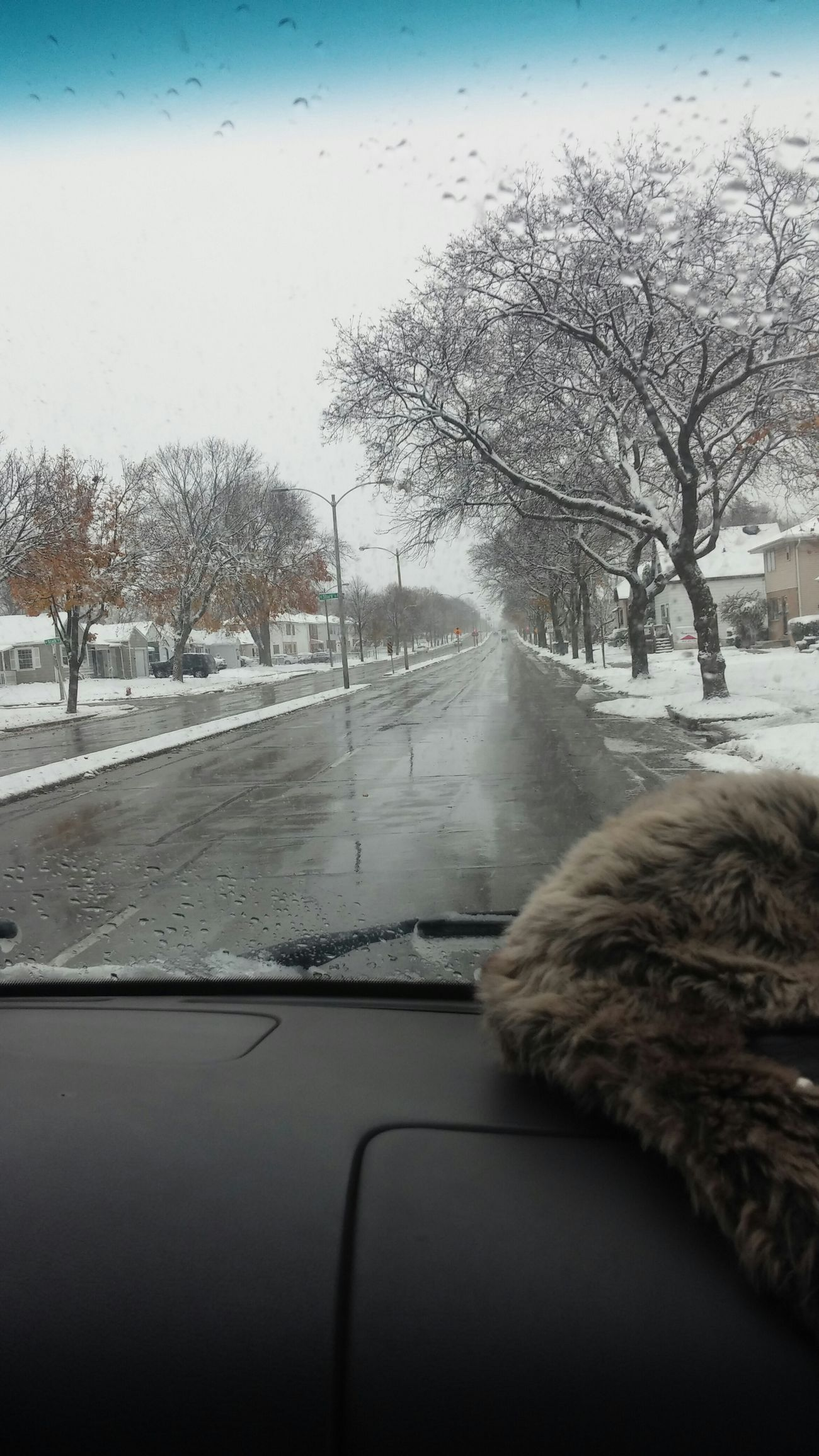 How Do You See Climate Change? 1st Snowfall Truckerslife