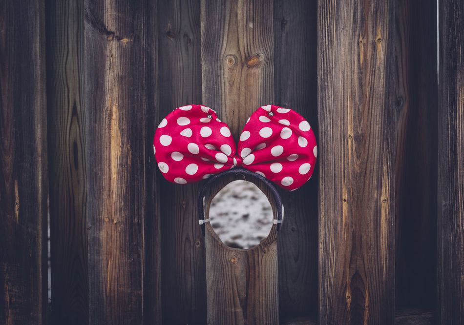 Bow Day Dog Hole Dog House Doggy Hole Fence Hole In Fence Metal Lock No People Pink Bow Winter Days