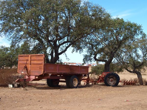 Countryside Oldvehicle Agriculture Trees Alentejo Portugal