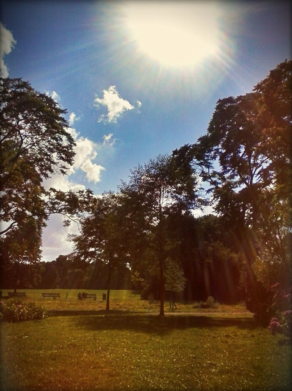 Untill we meet again Summer.. Goodbye Summer Vroesenpark Chillspot Stressrelief