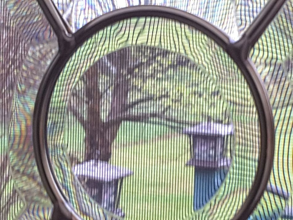 No People Day Outdoors Close-up Screen Landscape Beauty In Nature Springtime Tree Through The Glass Through Window