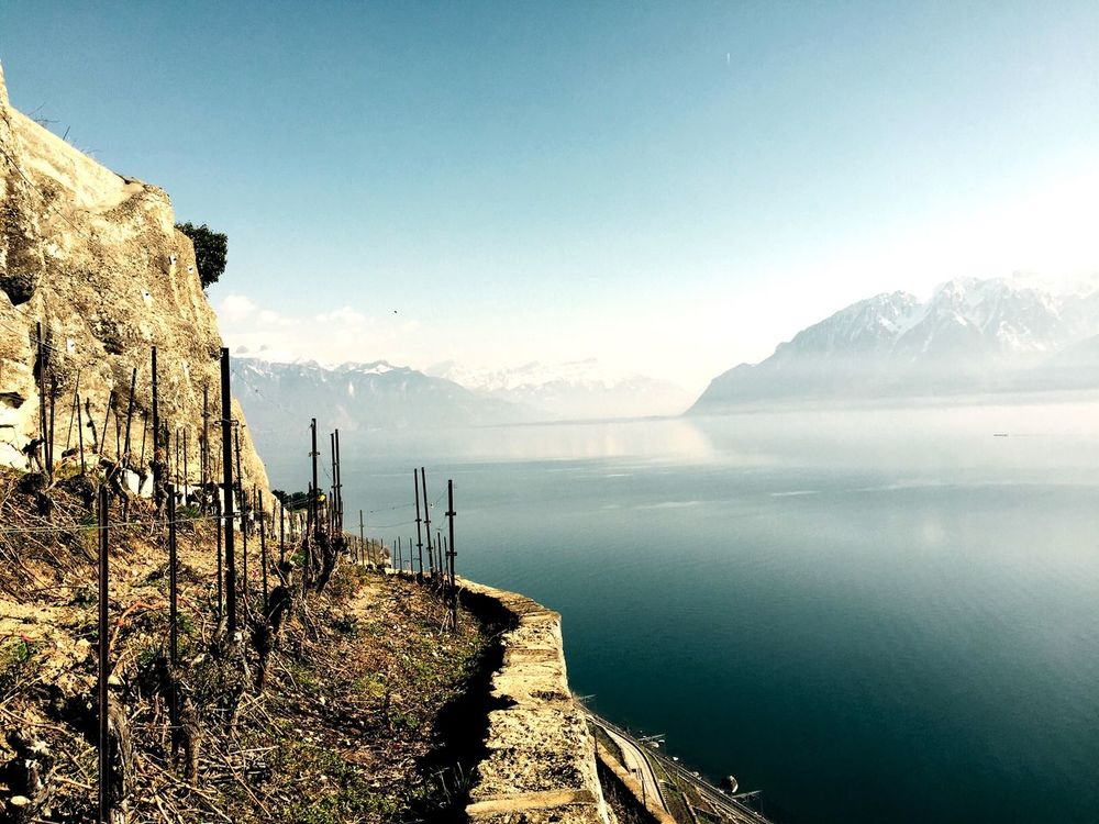 No Filter Lakesideview Lavaux EyeEmBestPics Nature Photography Nature_collection Wintertime EyeEm Nature Lover EyeEm Best Edits (null)Switzerlandpictures Mountains And Sky Lakeside Epesses Dezaley