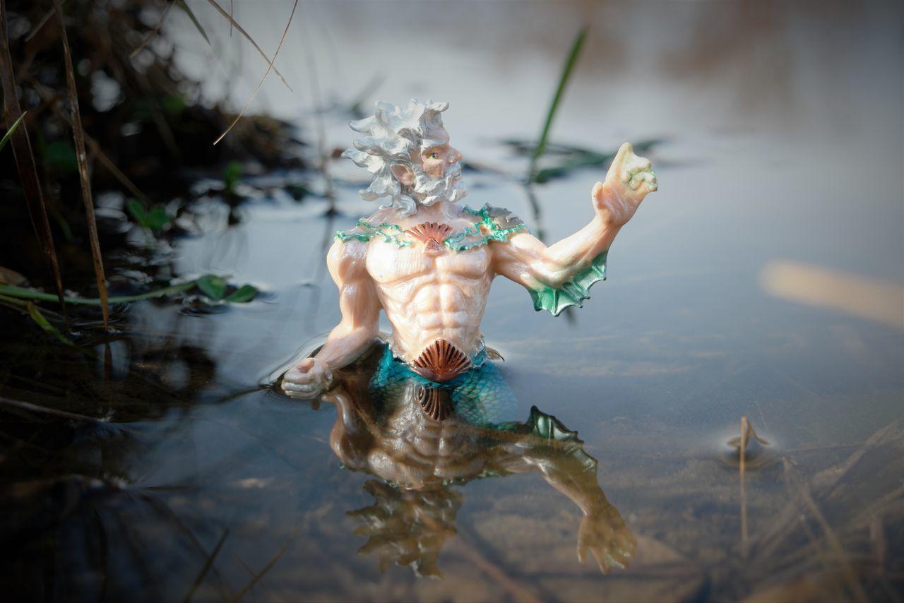 Close-up Detail Focus On Foreground Human Body Part Natural Pattern Poseidon Reflection Seashell Shell Single Object Statue Water