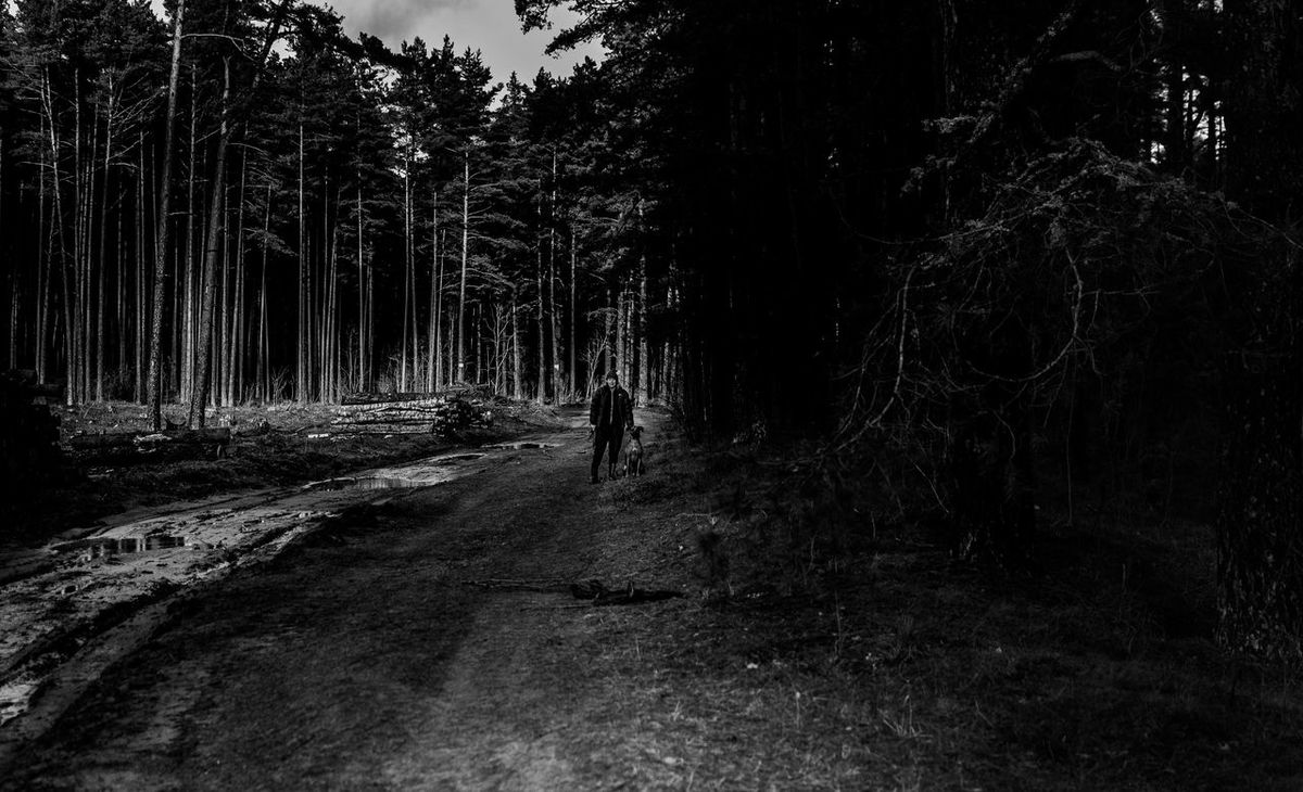 This is one of the newest photos I have made! It's kind of suprise for me, because I was just chekimg the light and the this came out, i do really enjoy this picture! # #35mm #blackandwhite #nikon #photograpie #nikond3100 Beauty In Nature Day Forest Growth Nature Outdoors Scenics Sky Tranquil Scene Tranquility Tree