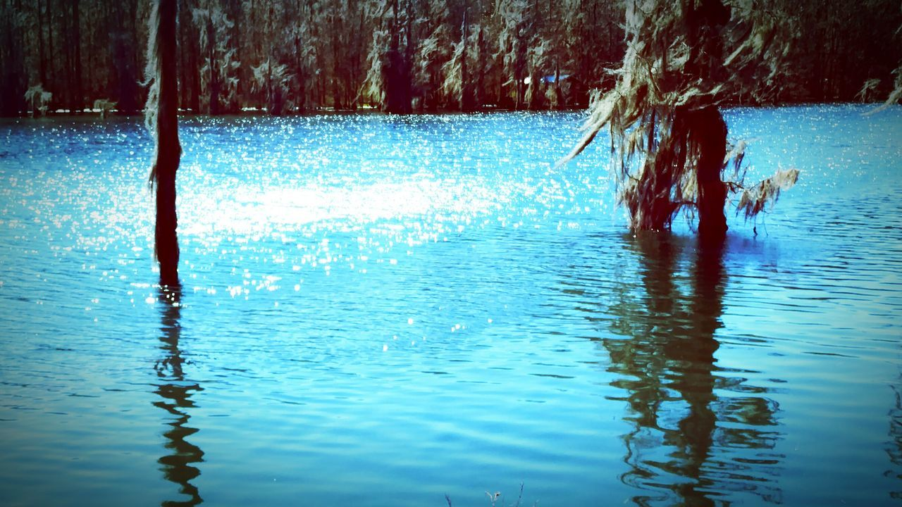 Quenching Color Q Blue Springs Blue Roof House Bluesmyfavoritecolor NoWordsNeeded EyeEm Best Shots Simple Pleasures Easy Like Sunday Morning Water Reflections Florida Life Eyemphotography