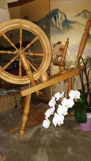Boots N Jeans Gal💝 Flower Indoors  Japanese Screen Just Be Me 💎💙💎 Oklahoma Orchid Blossoms Spinning Wheel Staging Photo📷