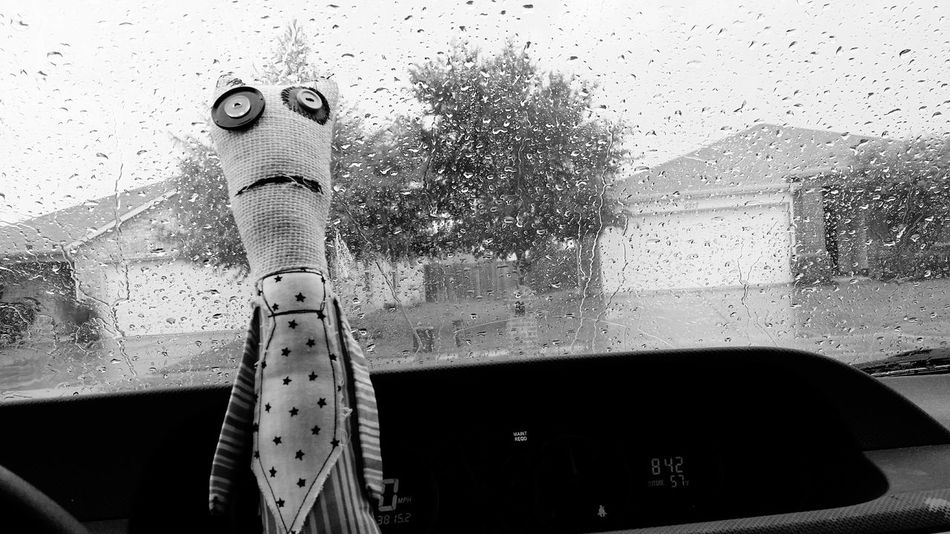 Rain Forecast Doll Face Disappointment Face