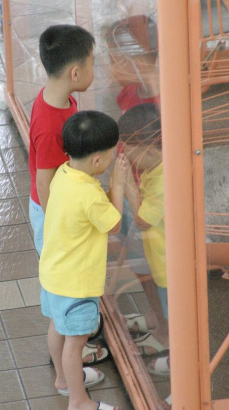 Two little boys looking through shop window Boys Childhood Day Full Length Leisure Activity Lifestyles Looking Through Glass Outdoors People Real People Standing Togetherness Two People Window Shopping...