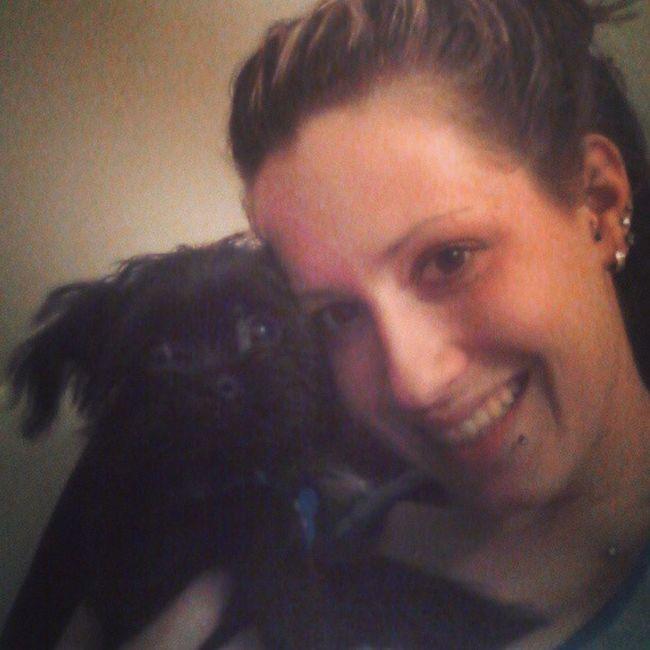 Oliver! Widdlebaby Tiny Pup NewAddition shorkie