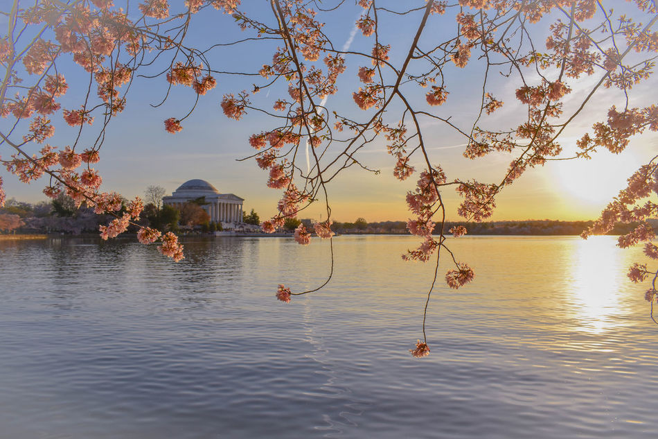 Reflection Sunset Water Travel Business Finance And Industry Sky Mountain Tranquility Nature Tree Lake Beauty In Nature Outdoors Architecture No People Day Washington, D. C. Nature Photography Photography Travel Destinations