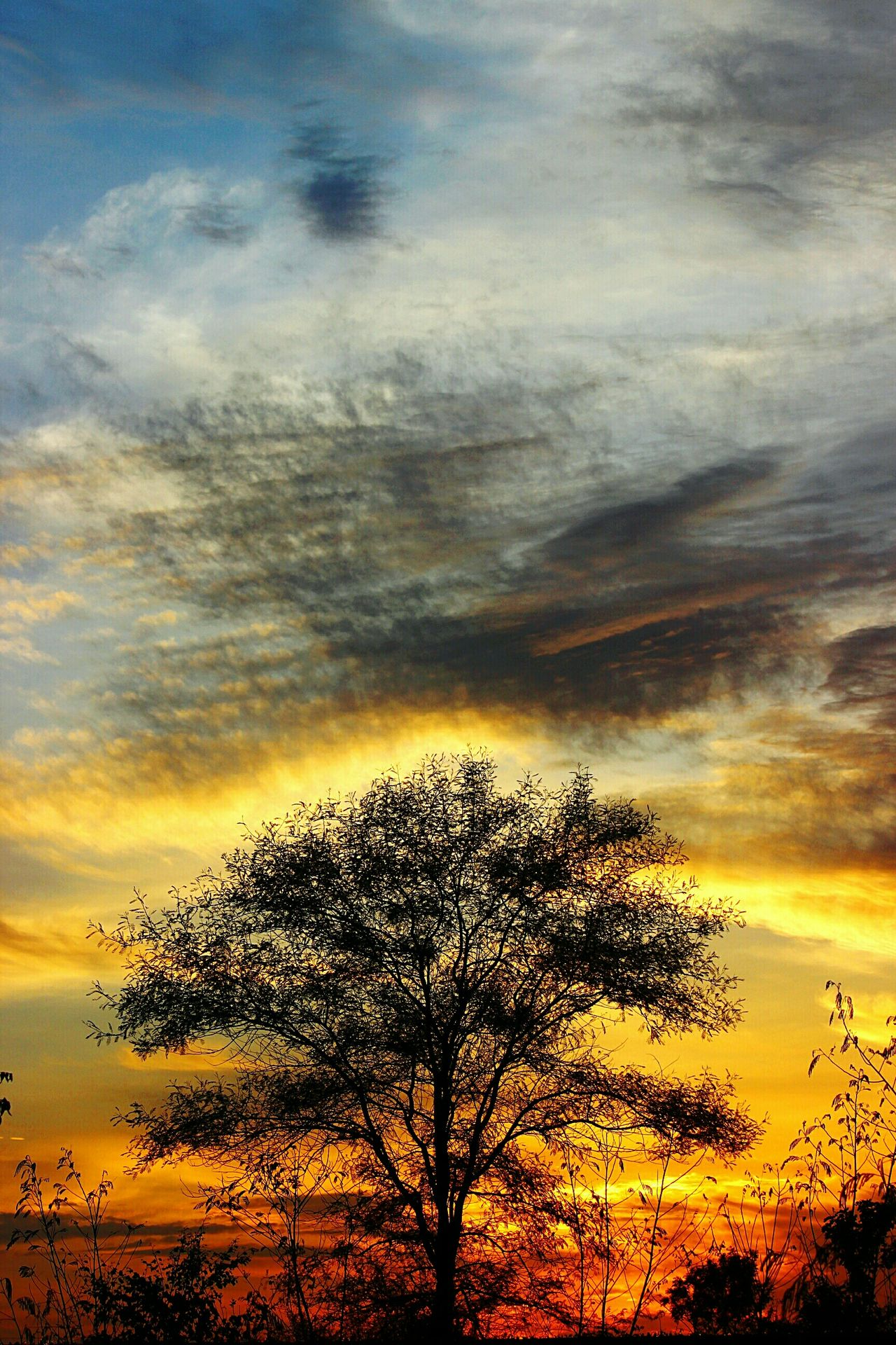 """""""because in the end, we are all dreamers in an endless universe""""Evening Glow Summer Views The Great Outdoors - 2015 EyeEm Awards Evening Sky Sky_collection Fiery Sunset Sky And Clouds EyeEm Nature Lover EyeEm Best Shots - Landscape EyeEm Best Shots - Nature"""