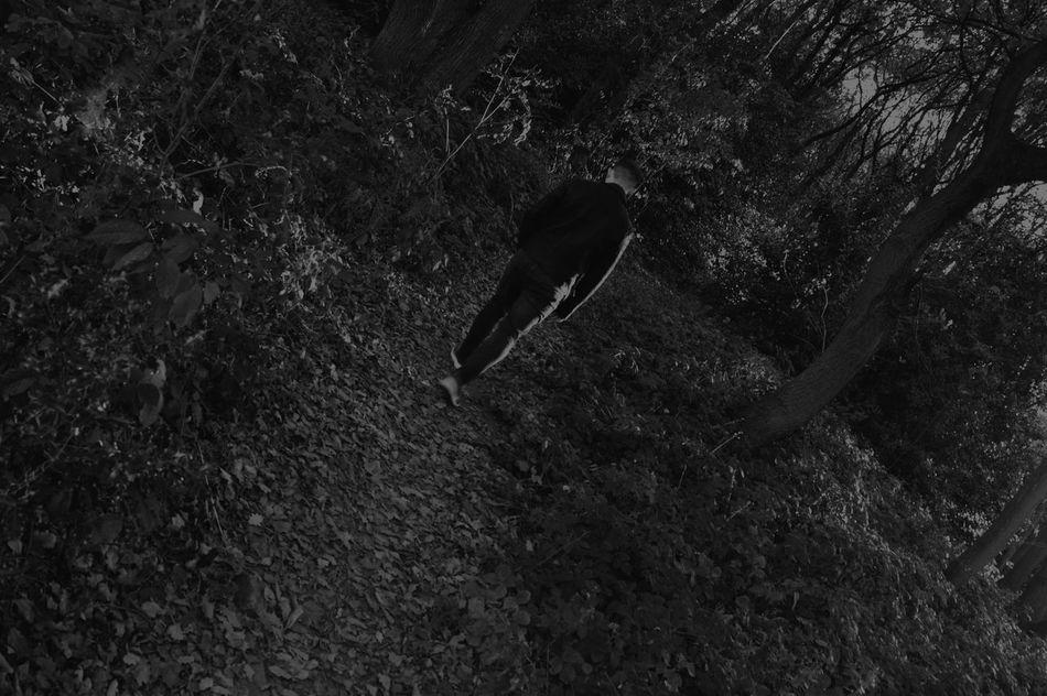 We never walk alone!!!! Alone Alternative Model Never Nikon Phoyography Thereturn Walk Woods