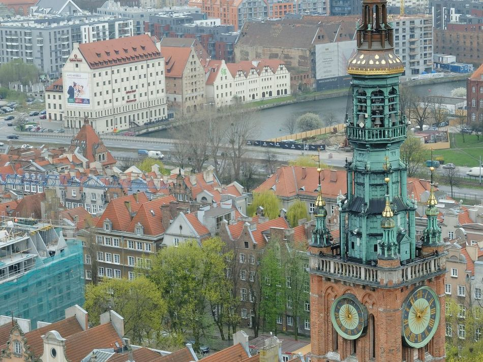 Full Frame No People Building Exterior Day Architecture Backgrounds Outdoors City Cityscape Tree Close-up City View  Towers View Tower Gdansk Gdansk (Danzig) Urban Skyline Built Structure