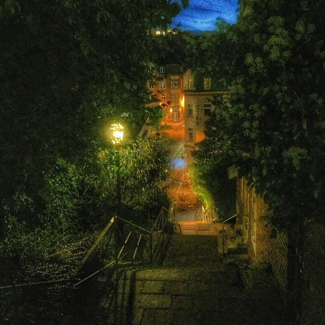 Battle Of The Cities Illuminated Tree Steps Architecture Built Structure Staircase Plant The Way Forward Night Growth Building Exterior Outdoors Stairs Narrow Footpath Tranquility Tranquil Scene No People Bridge Green Aachen