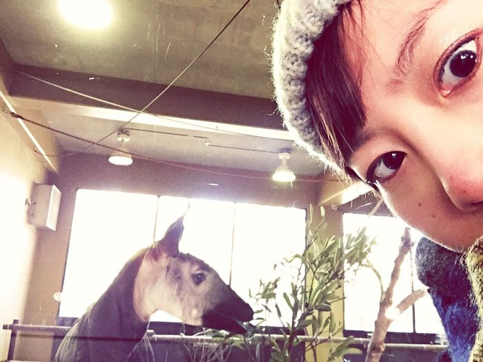 Okapi and I!